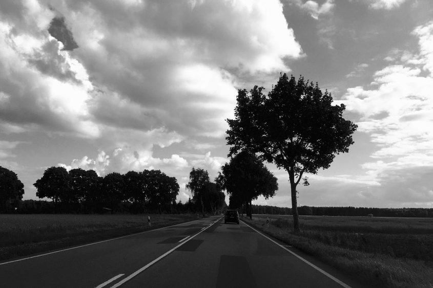 altesland_blog